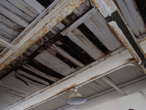 The roof drains up on the third floor were the leak problem.  The constant drip (but only when it rains) is what rotted out the floor.  Had someone bothered to seal those up starting in the 1970's,  then none of the floors would be rotten on this side now.