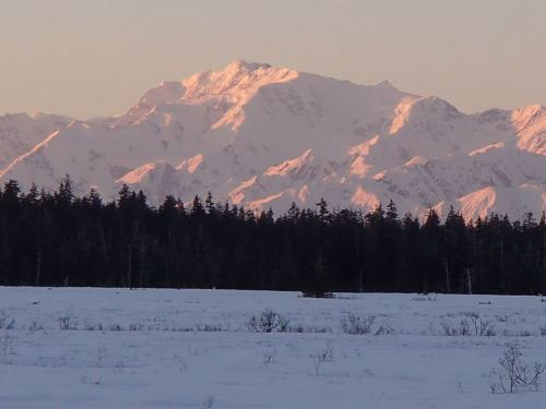Looking out across 9 Mile Meadow on the way home - with the sun setting and casting a red glow across the mountains.