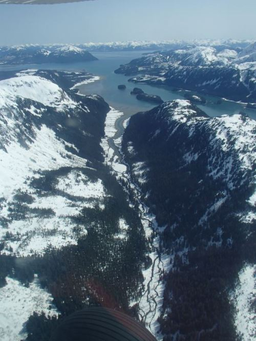 There are some incredible looking remote rivers and streams throughout Glacier Bay - who cares about the glaciers!