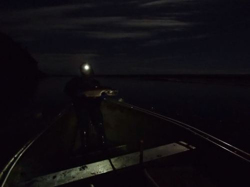 Once your eyes adjusted to the moonlight,  you really didn't need to headlamps to see - made navigating the sandbars with the jet-boat relatively easy