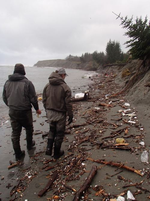 What an ugly mess of garbage and debris along the tideline